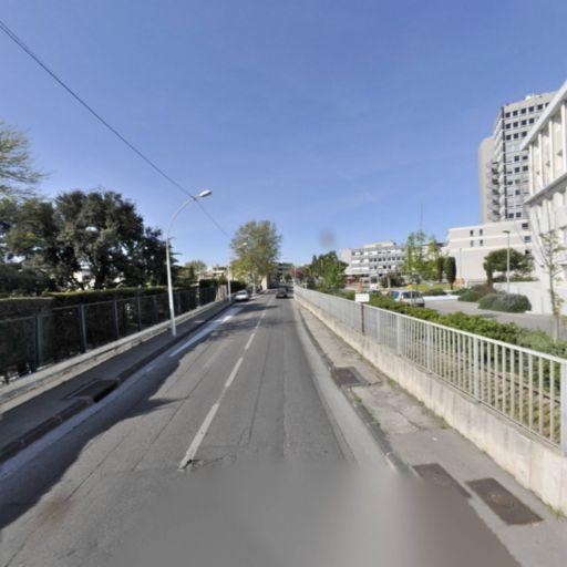 Mccallum Elaine - Interprète - Marseille