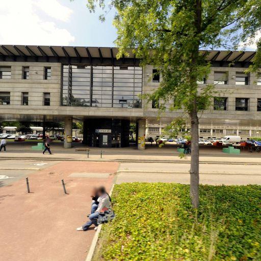 Service D'orientation Et D'insertion Professionnelle - Enseignement supérieur public - Villeurbanne