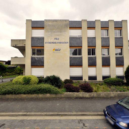 Institut Notre-Dame Espérance - École primaire privée - Angers