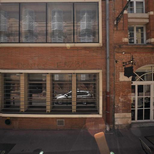 Hôtel d'Alliès - Attraction touristique - Toulouse