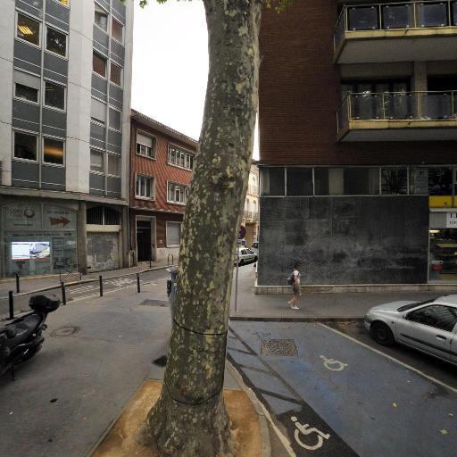 Le Géant Des Beaux-arts Toulouse - Encadrement - Toulouse