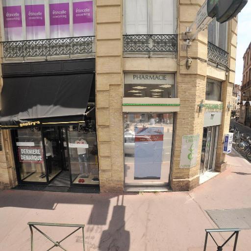 Hôtel de Pins et hôtel Antonin - Attraction touristique - Toulouse